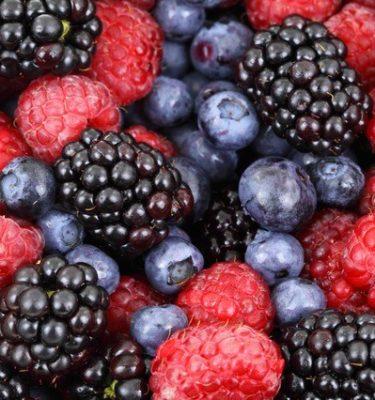 Piantine di piccoli frutti